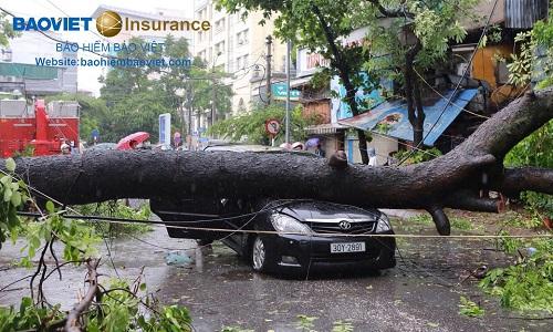 thiệt hại thân vỏ ô tô