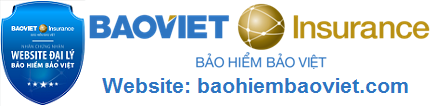 baohiembaoviet.com